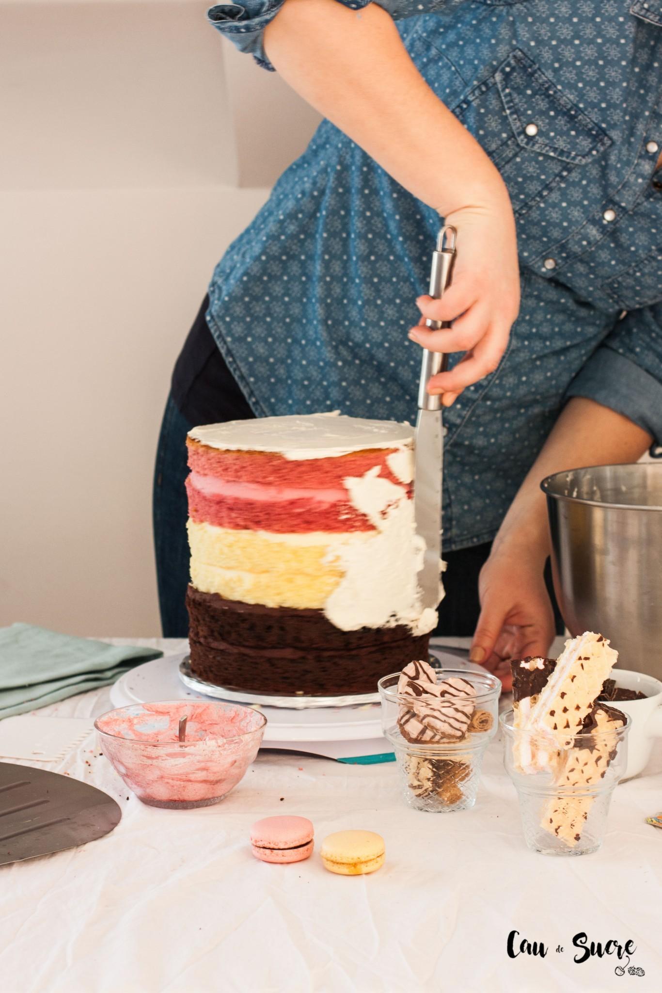 Neapolitan-cake-10