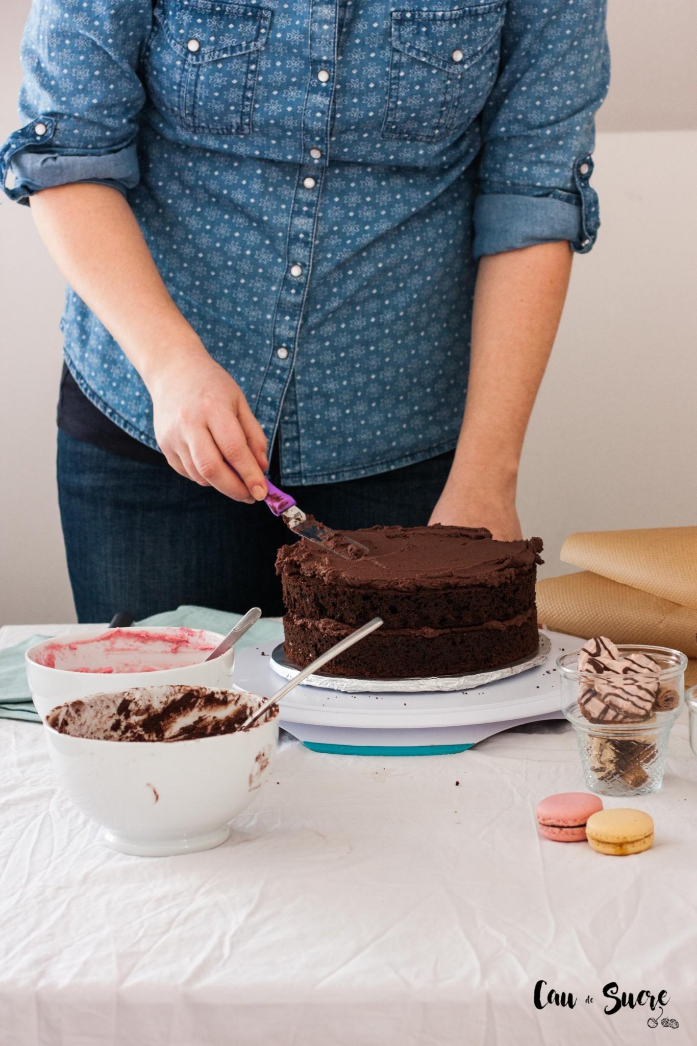 Neapolitan-cake-2