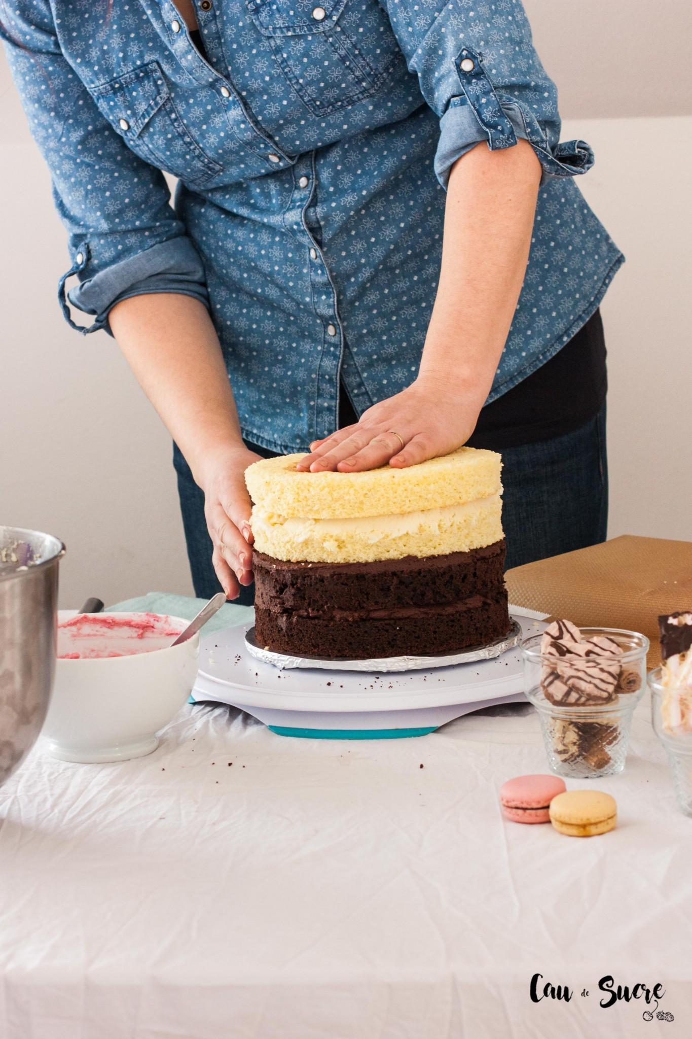Neapolitan-cake-5