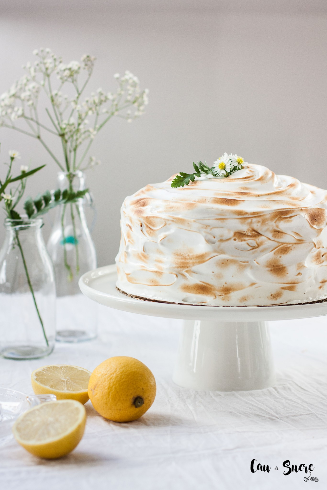pastel-limon-merengue-7