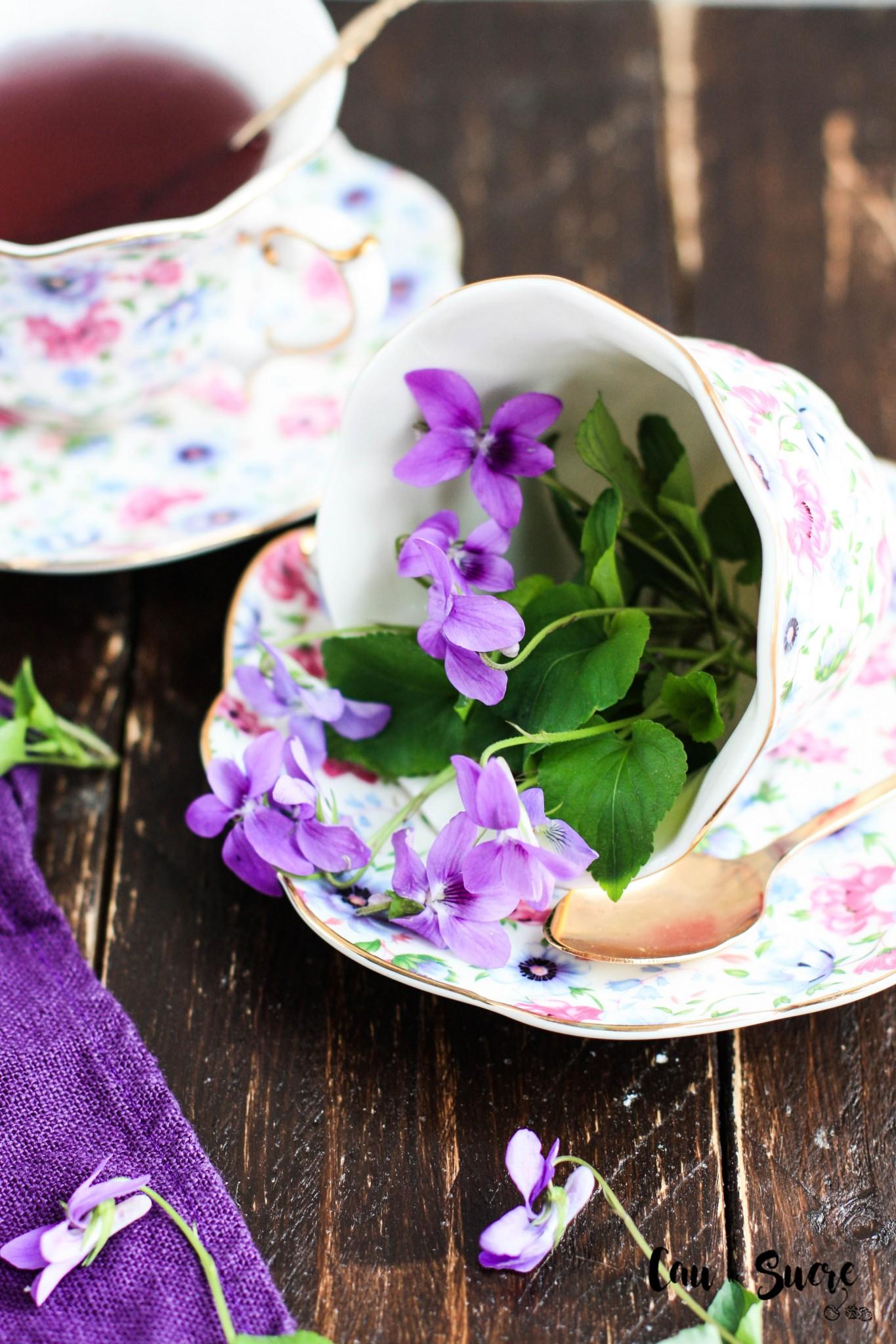 eclairs_violeta-3
