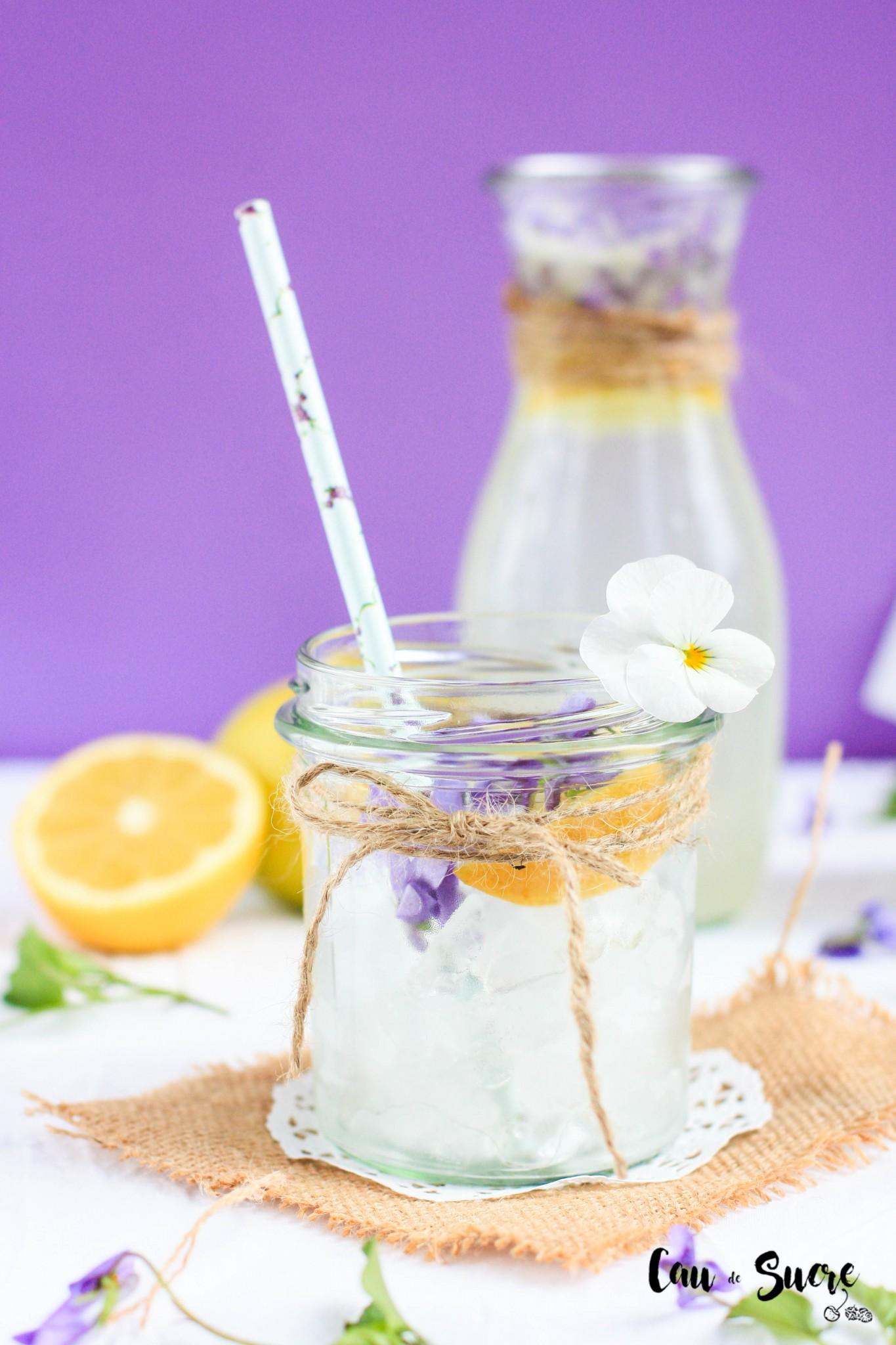 limonada_violetas-12