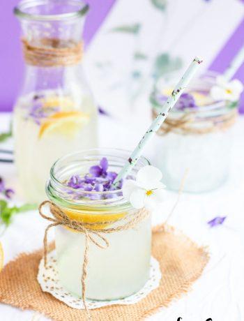 limonada_violetas-31