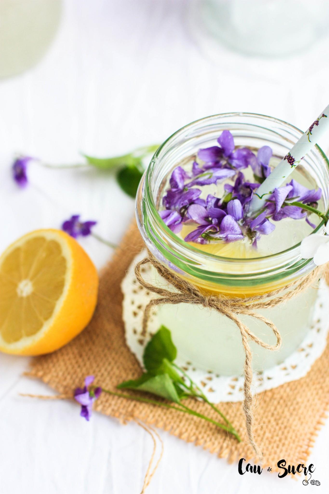limonada_violetas-35