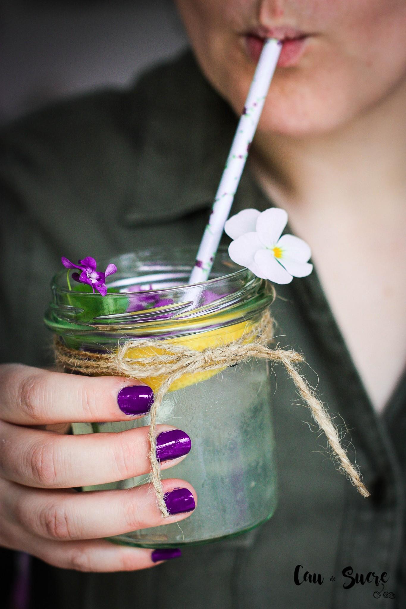 limonada_violetas-40