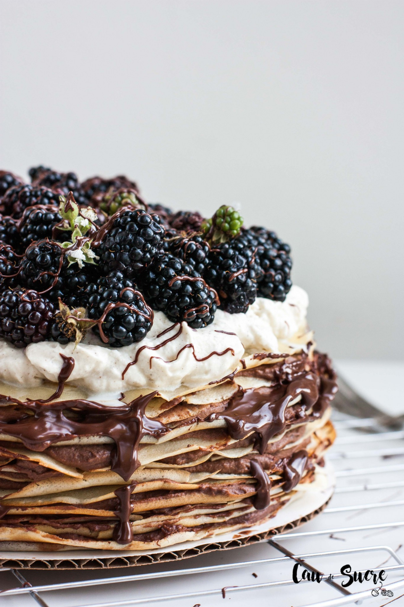 Tarta_mil_crepes_chocolate_moras-10