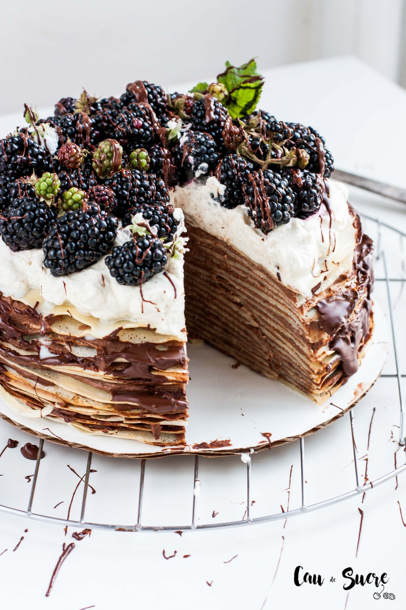 Tarta_mil_crepes_chocolate_moras-22