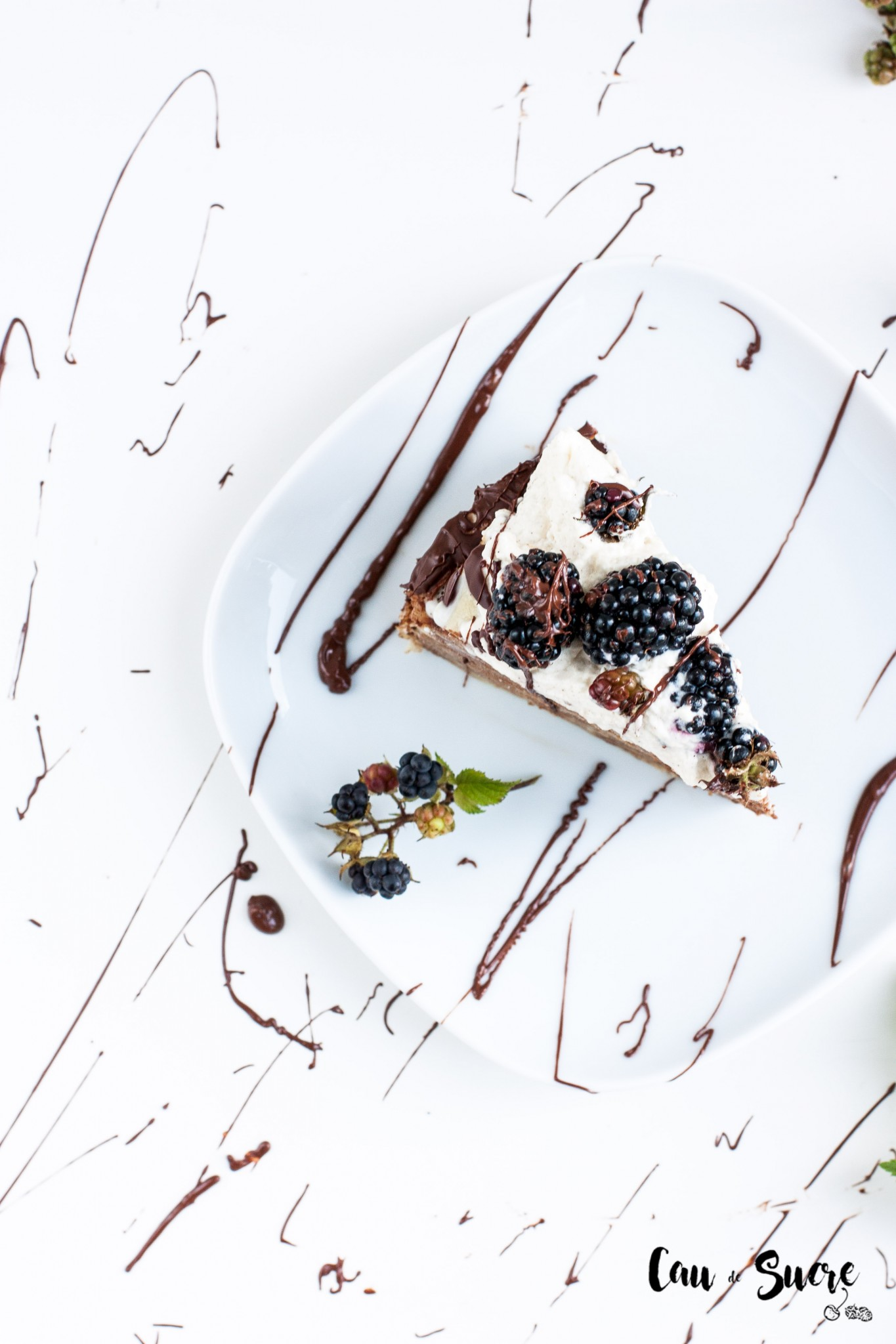 Tarta_mil_crepes_chocolate_moras-31