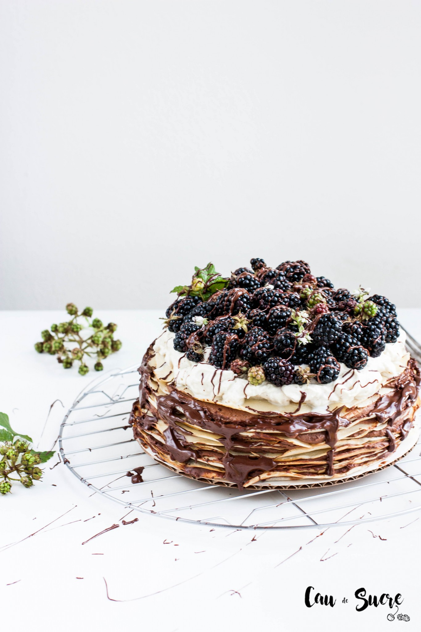 Tarta_mil_crepes_chocolate_moras-4