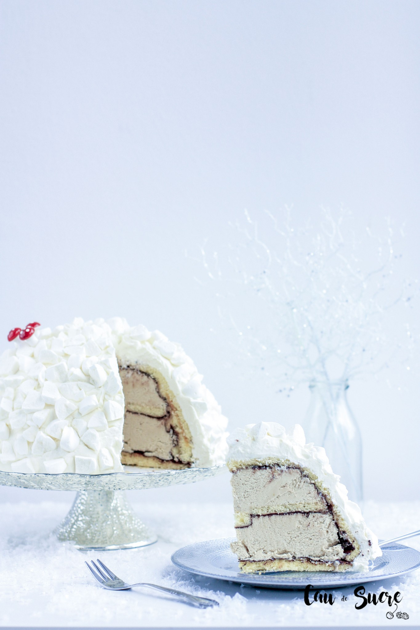 Tarta_helada_cafe_Navidad-46