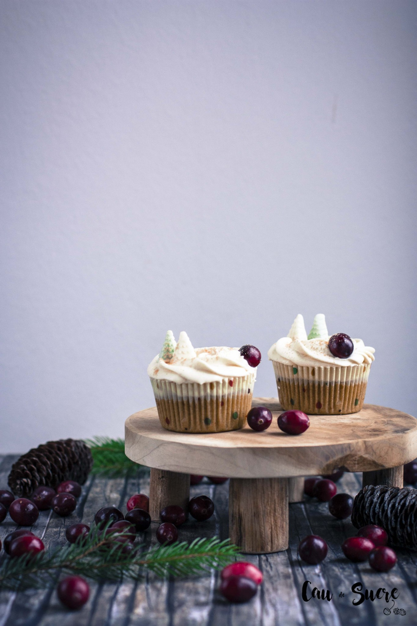 cupcakes_cranberry_manzana-24