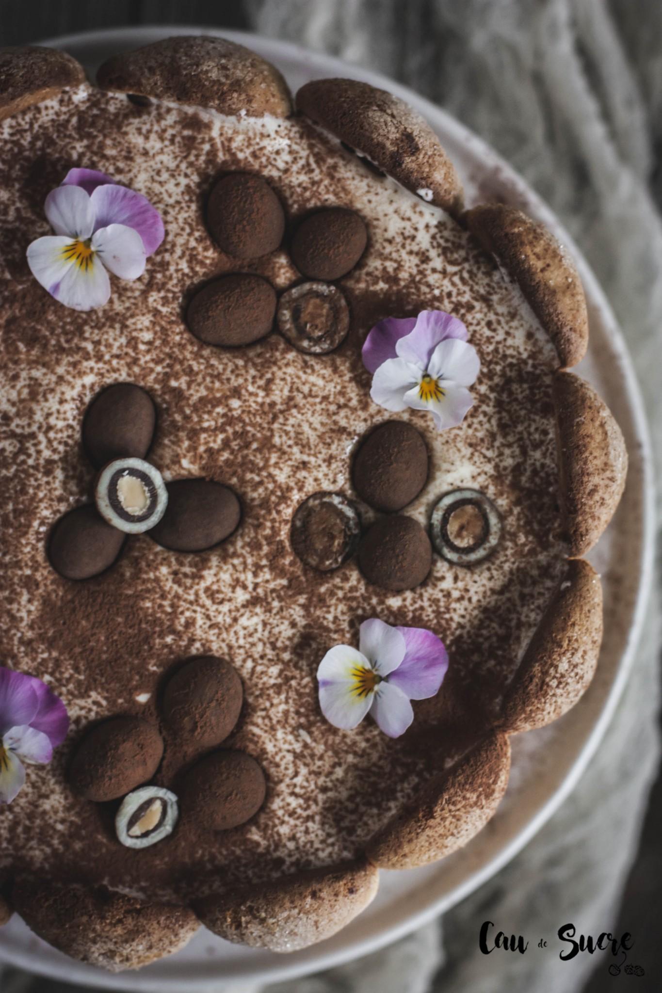 tiramisu_cake-19
