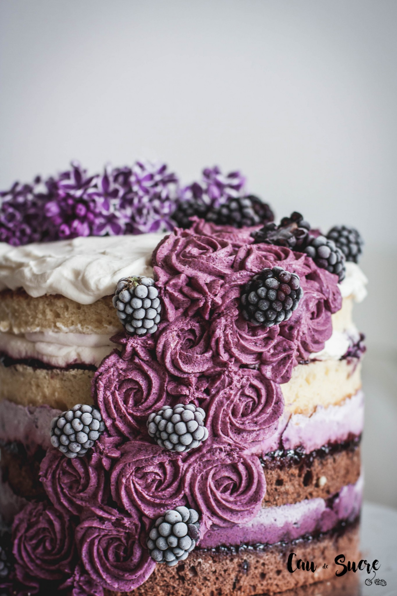 blackberry_ombre_layer_cake-17