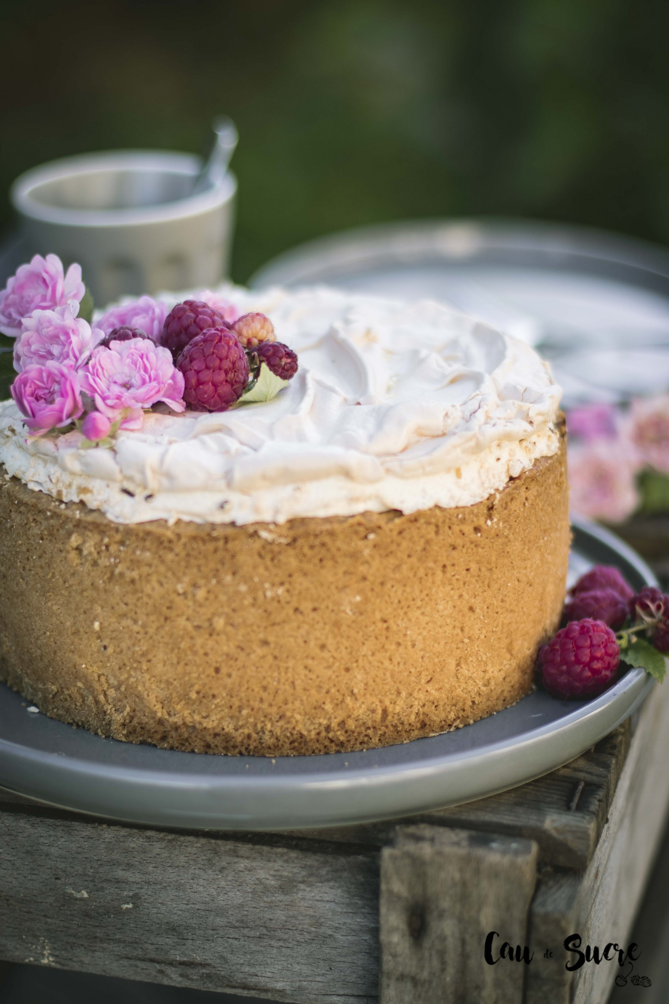 raspberry_meringue_cheesecake-15