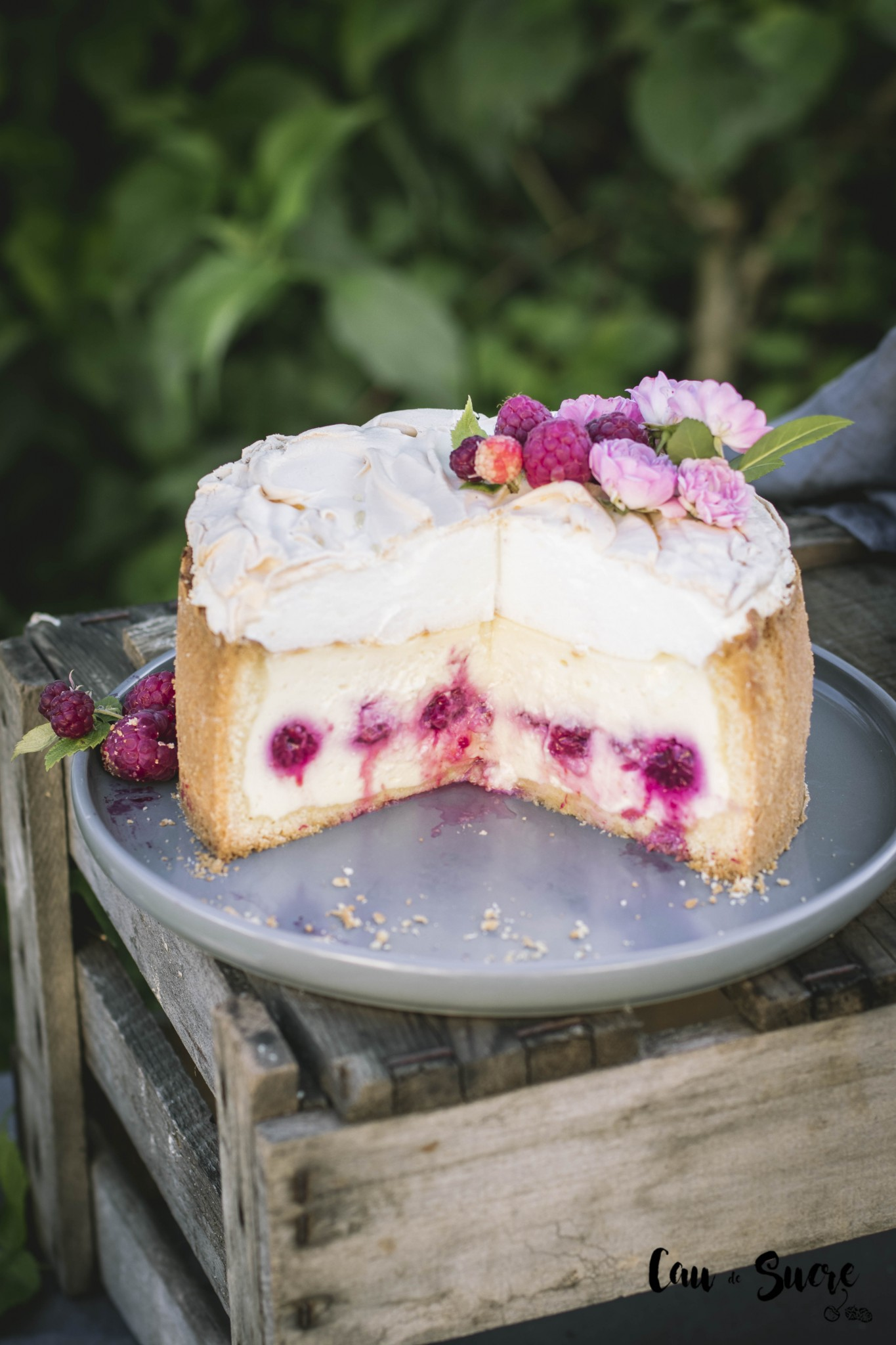 raspberry_meringue_cheesecake-29