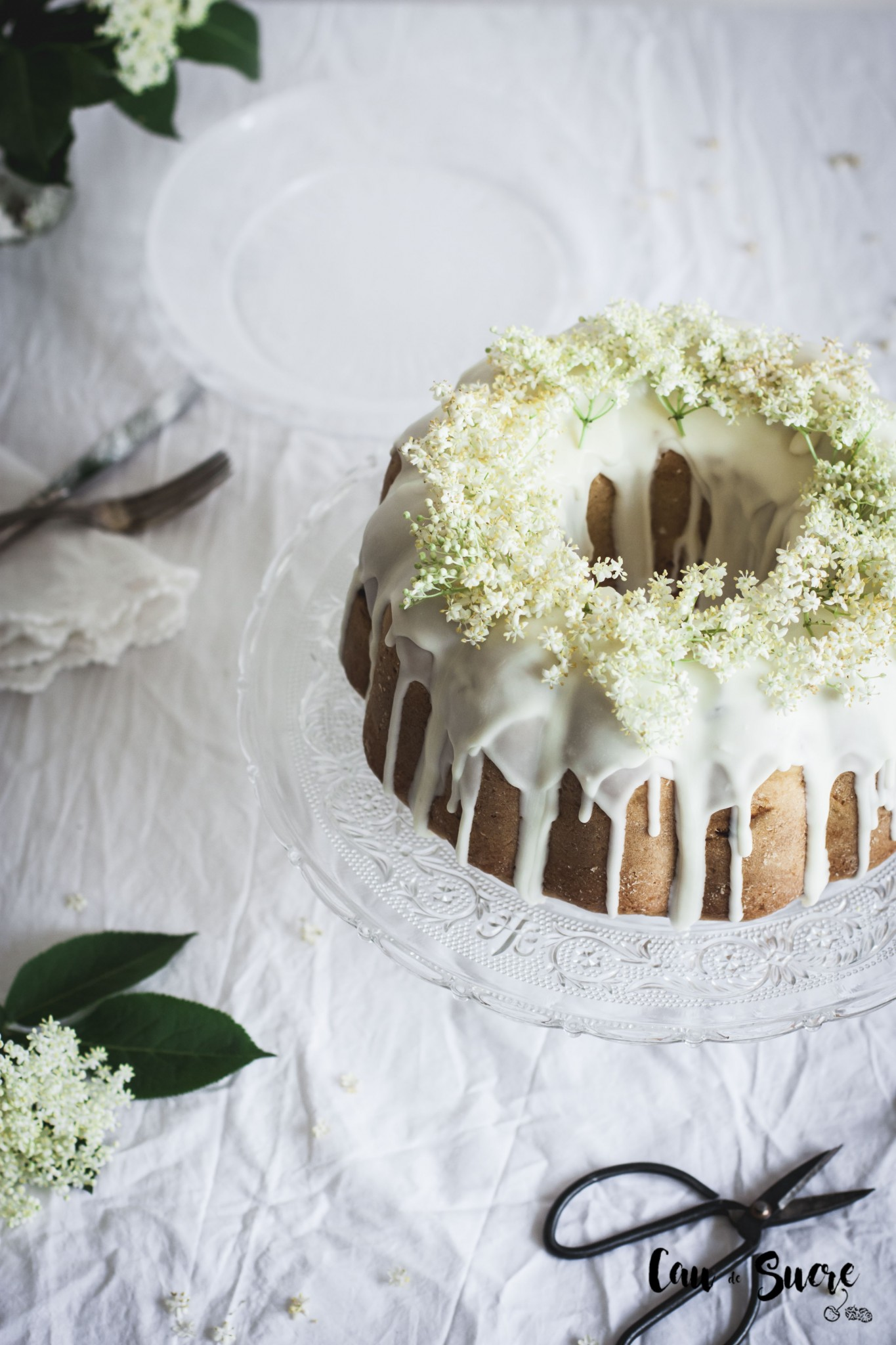rhubarb_eldelflower_bundtcake-14