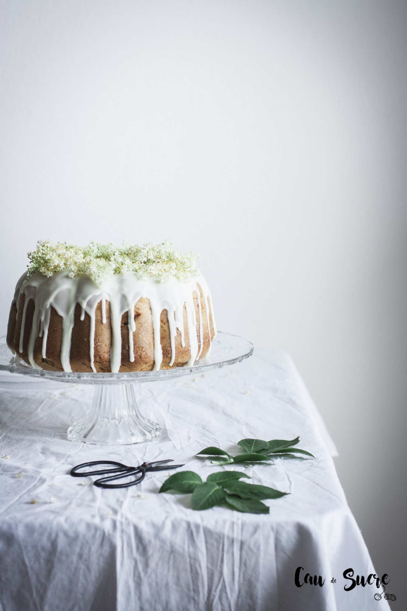 rhubarb_eldelflower_bundtcake-2
