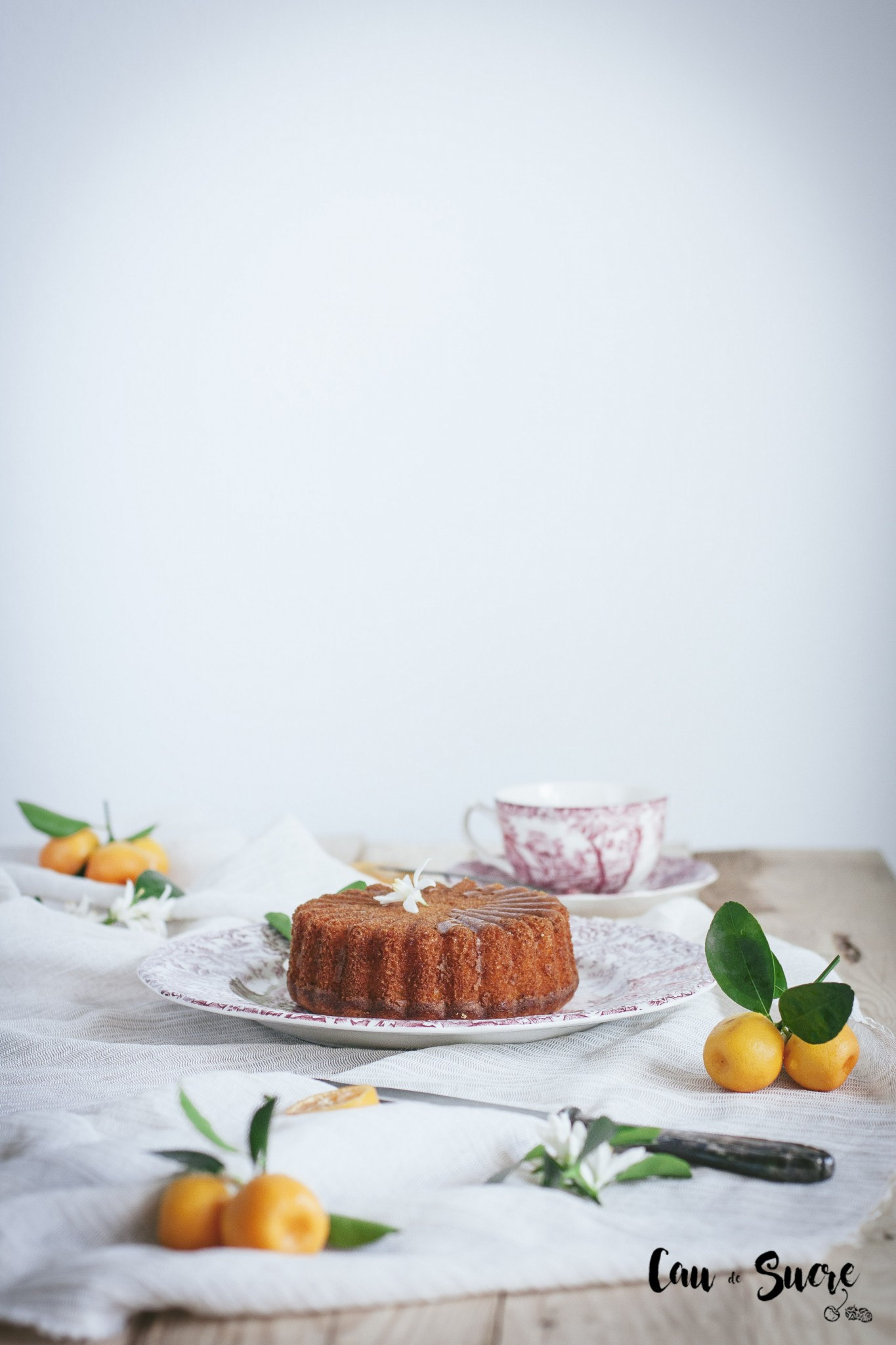 ricotta_orange_honey_cake-10