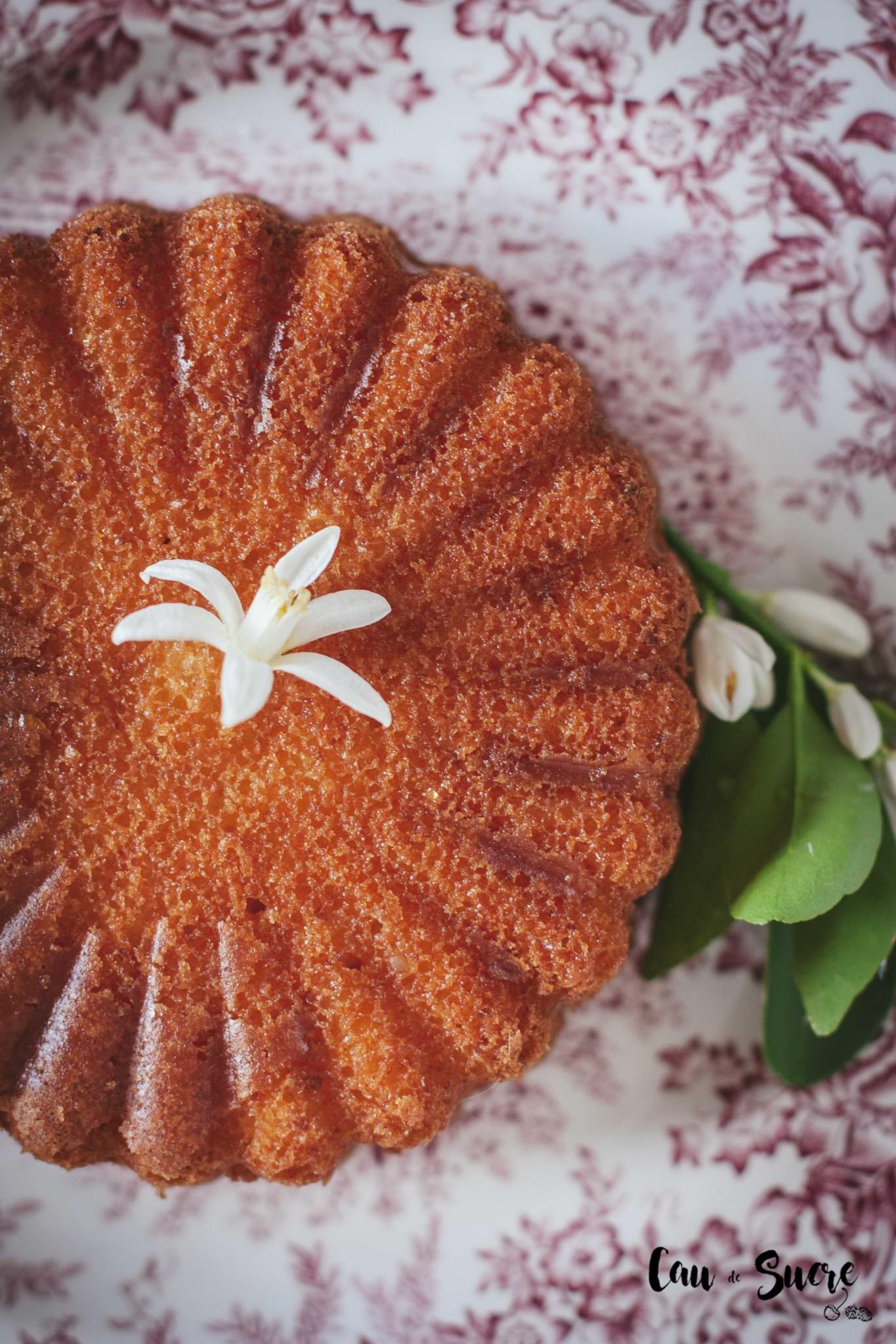 ricotta_orange_honey_cake-29