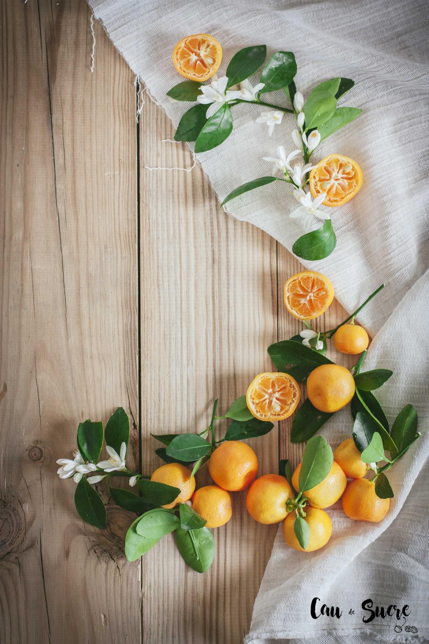 ricotta_orange_honey_cake-31