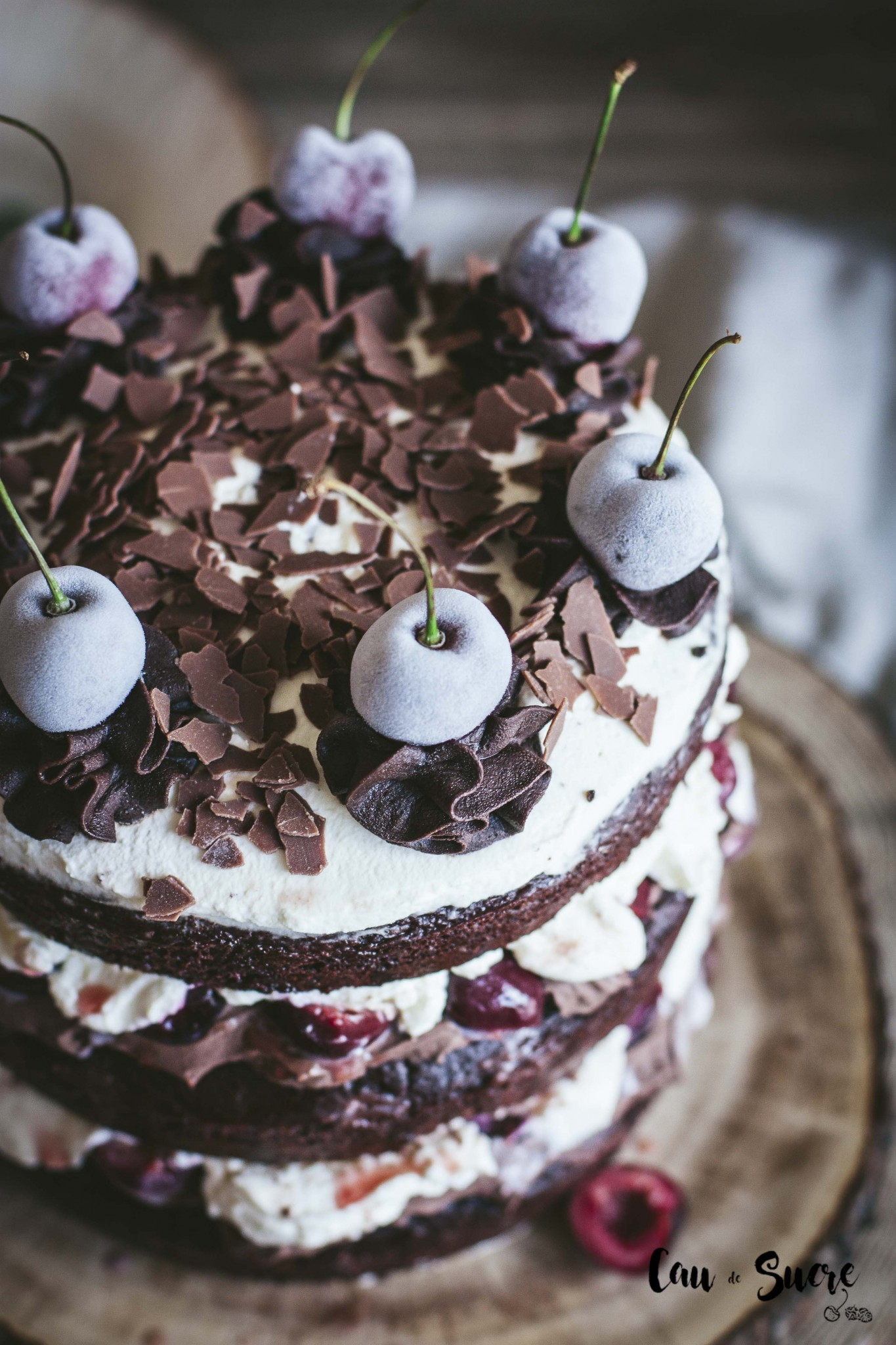 black_forest_layer_cake-7
