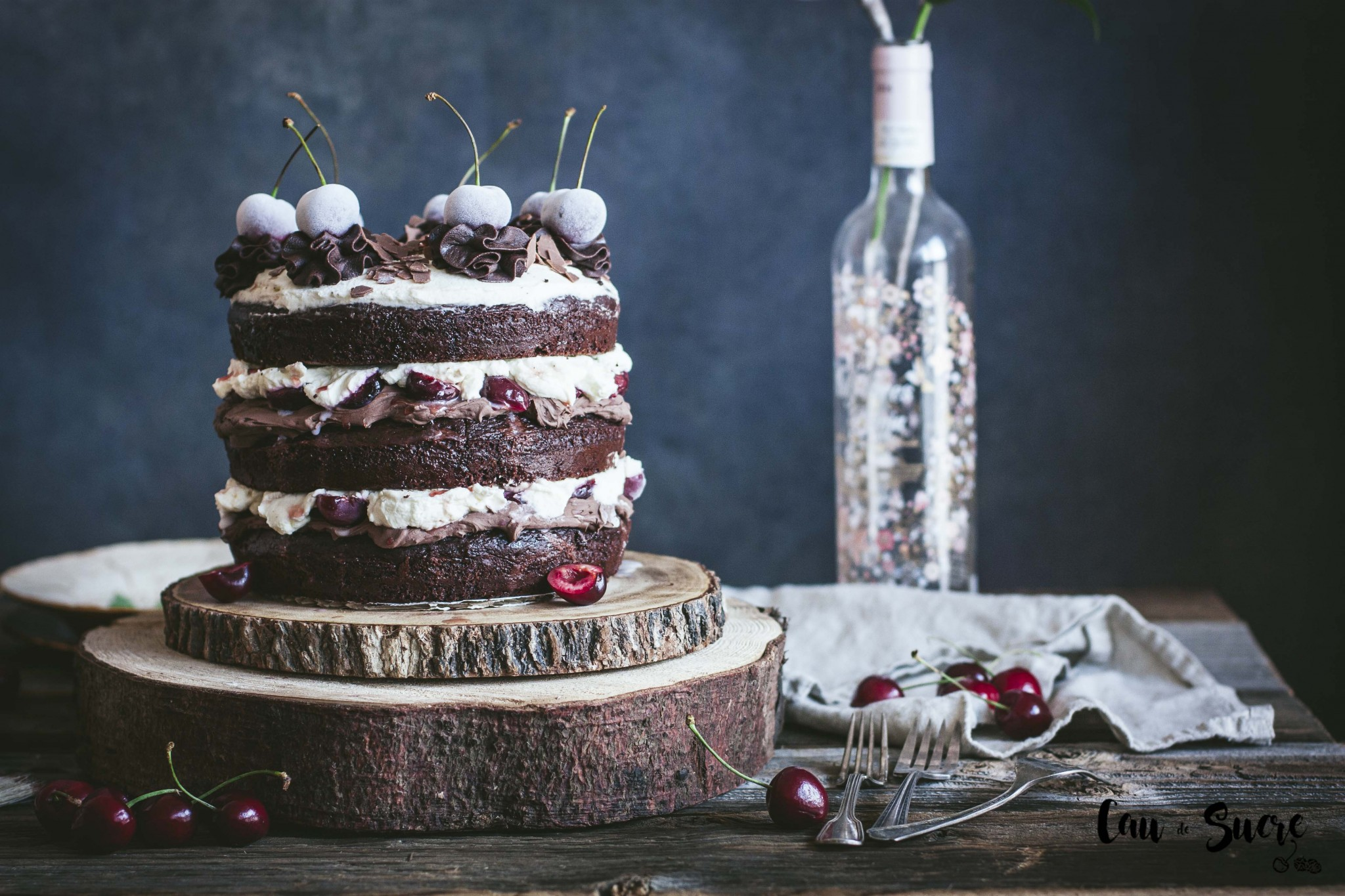 black_forest_layer_cake-9