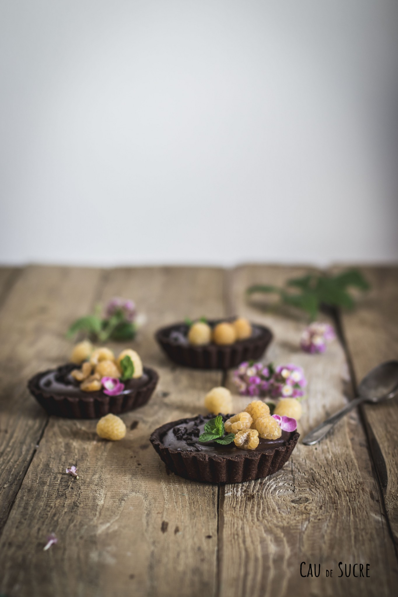 chocolate_raspberry_tarts-3