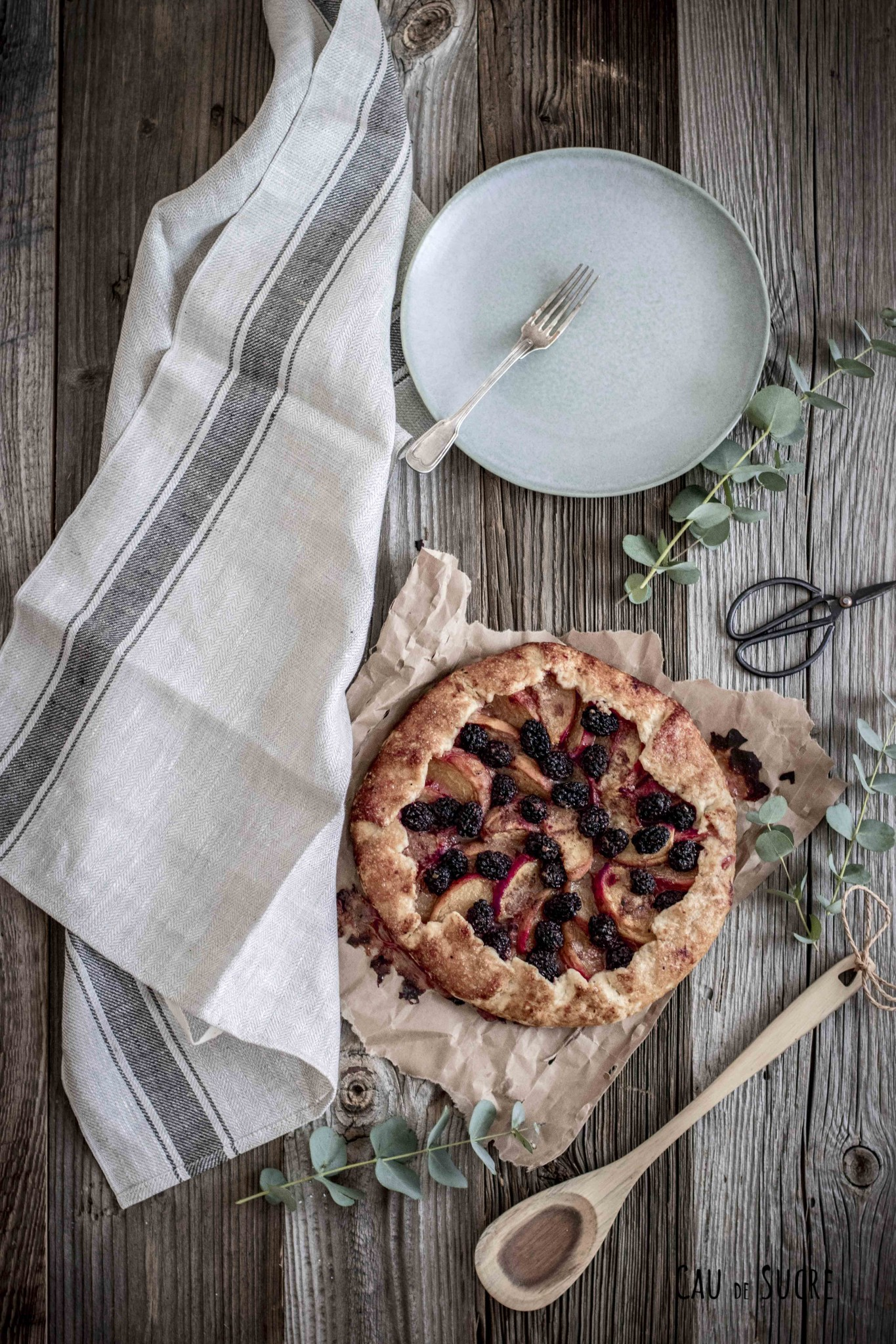 blackberry_peach_galette