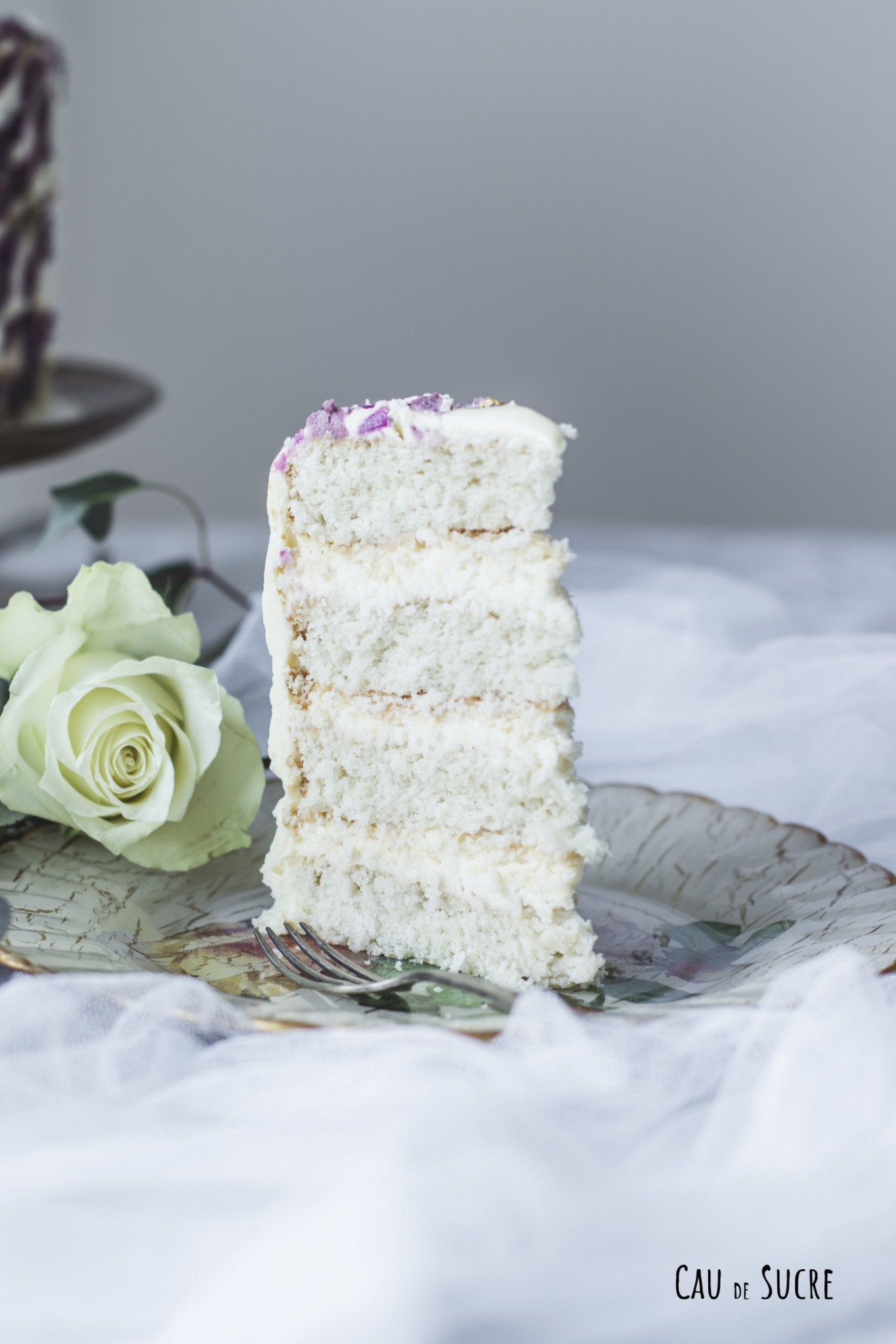 coconut_white_chocolate_layer_cake-43