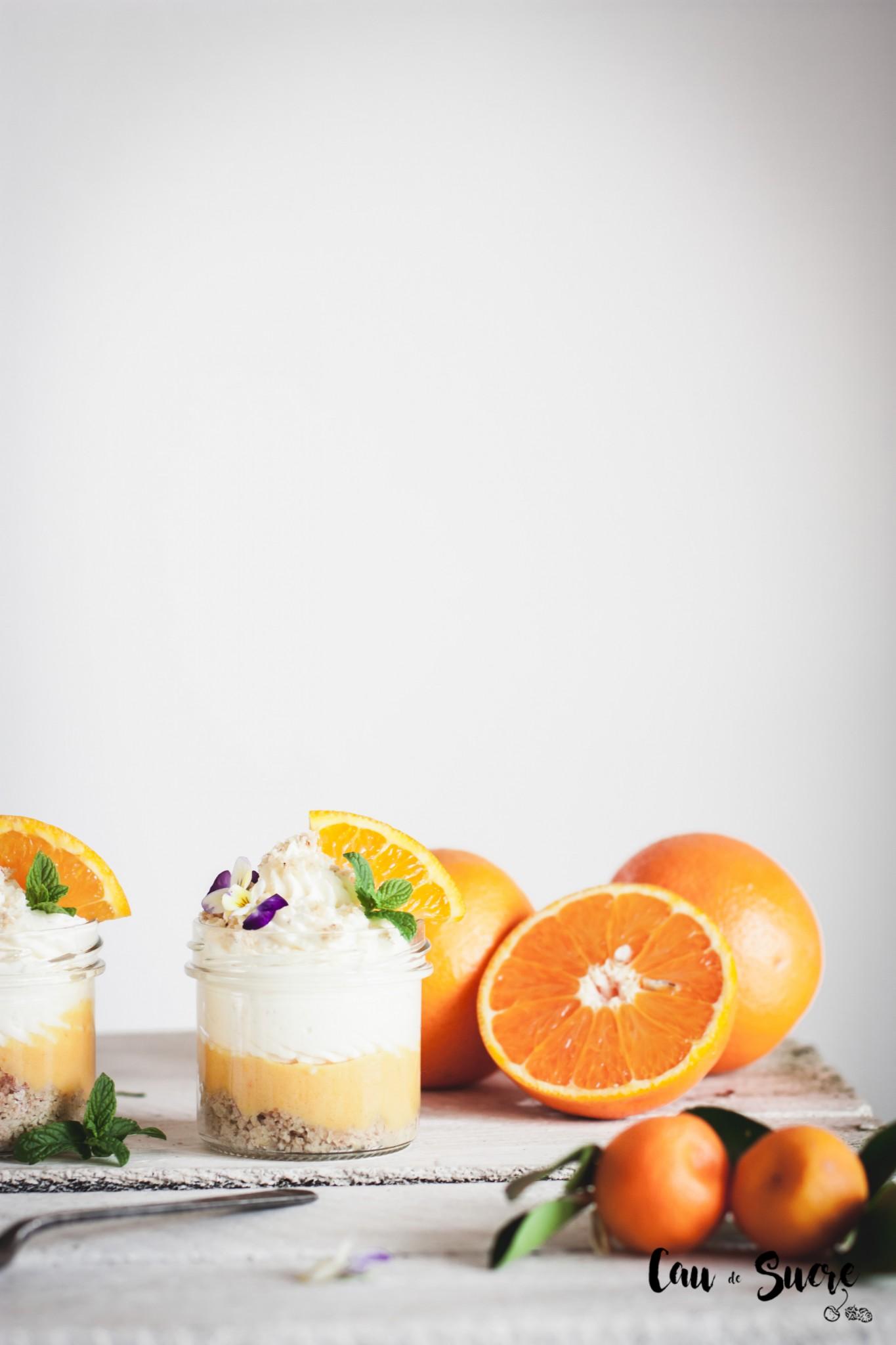orange_mousse-25