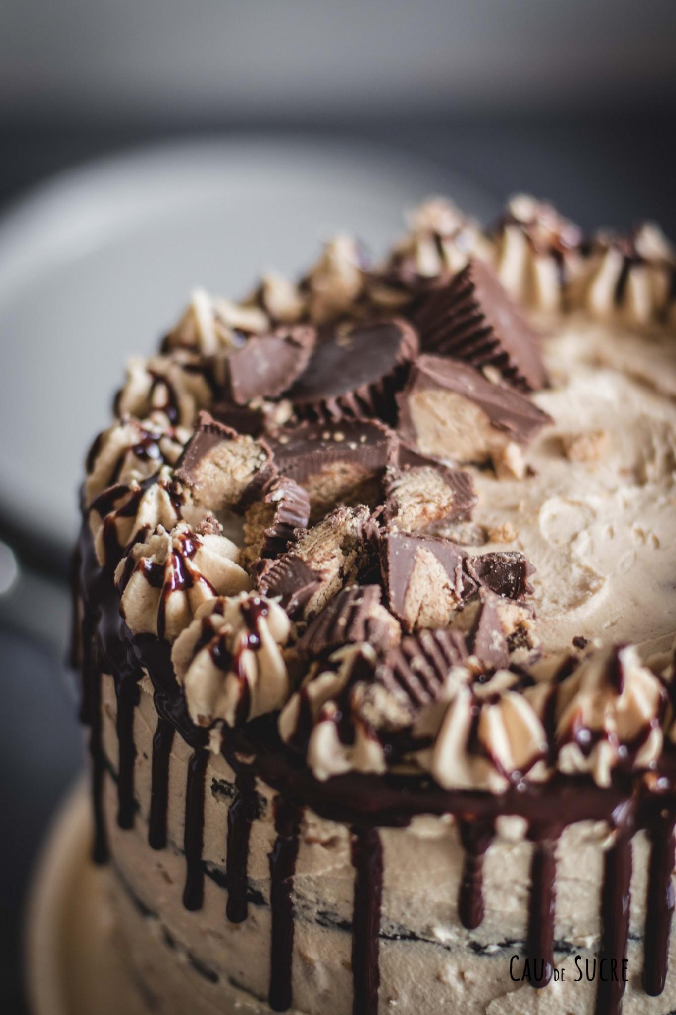 peanutbutter_chocolate_cake-12