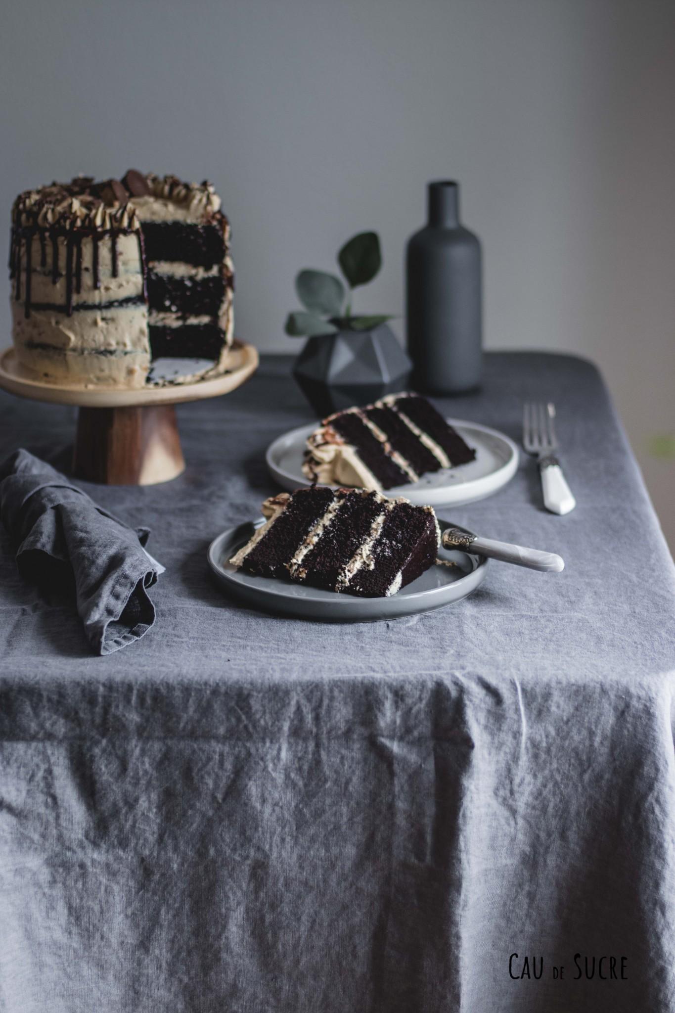 peanutbutter_chocolate_cake-15