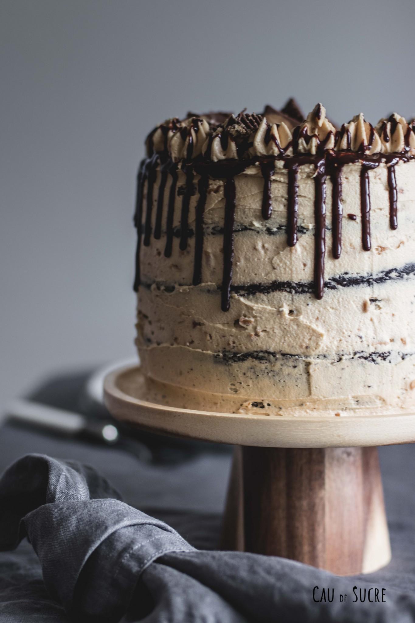 peanutbutter_chocolate_cake-9